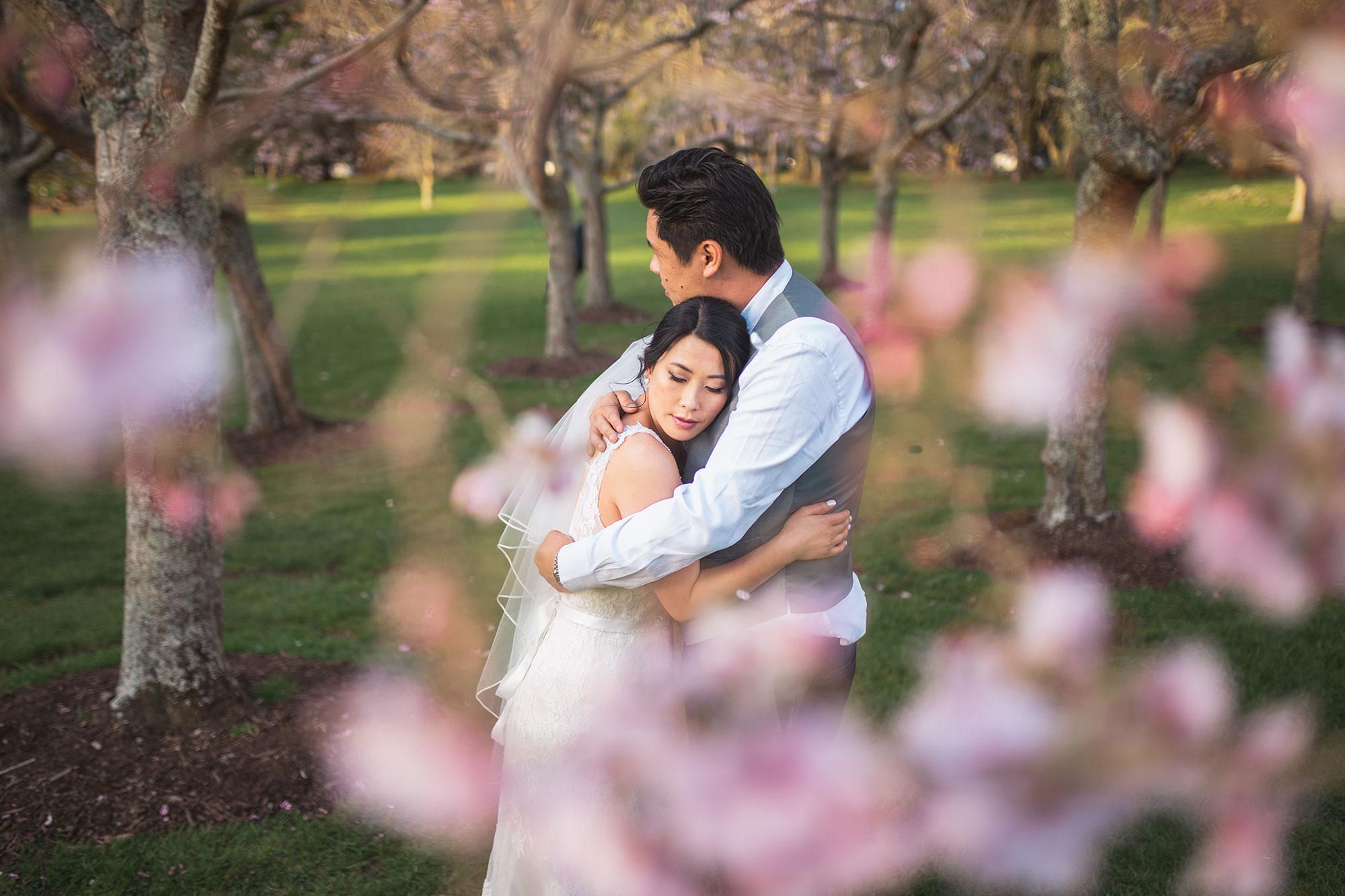 cherry blossoms wedding photo